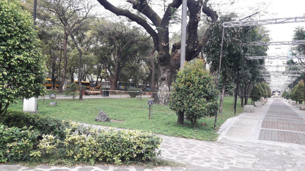 サントトマス大学(University of Sto. Tomas)のキャンパス