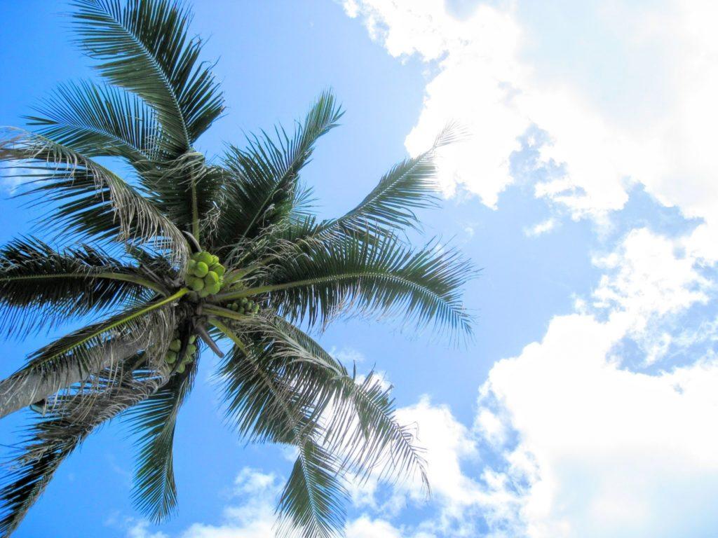 フィリピン留学青い空